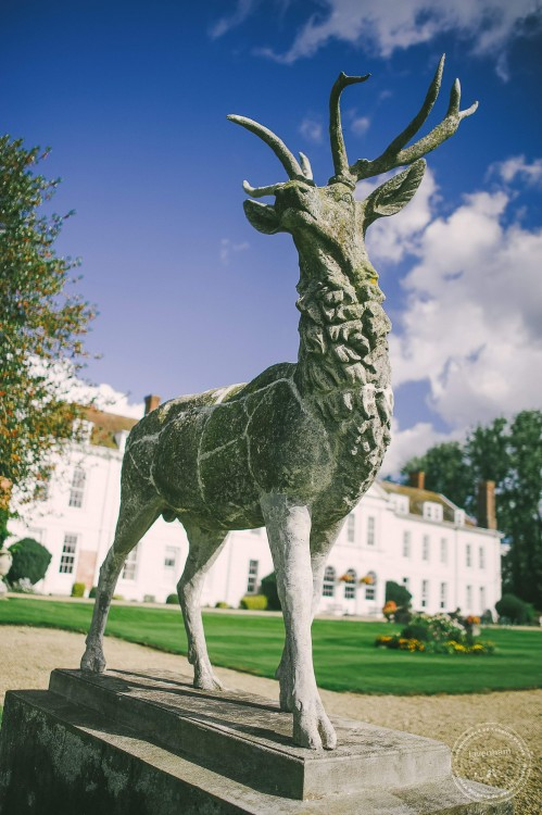 Wedding Photography at Gosfield Hall, Statue of Stag